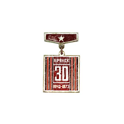 """Pin Soviético """"Briansk"""""""