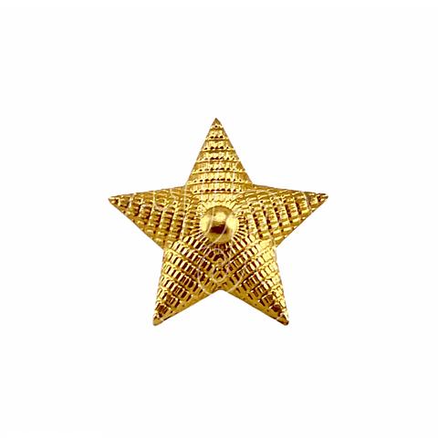 Pin Militar Ministerio de Defensa