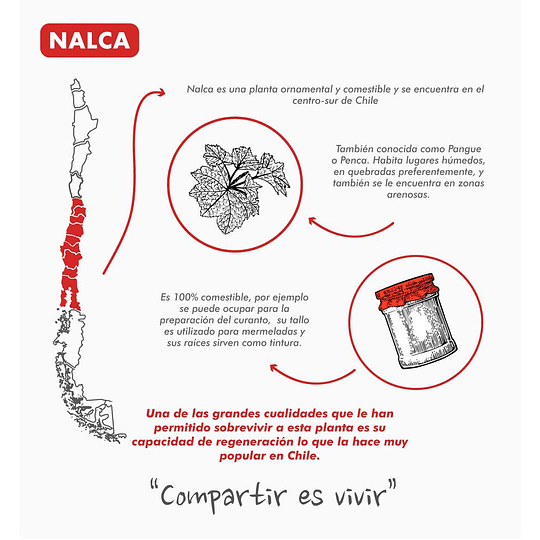 Manta Acolchada Atakama Outdoor Nalca Gris