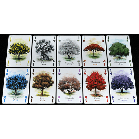 Preventa - Arboretum - Español