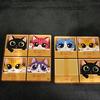 Preventa - CatBox - Español