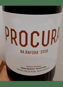 Procura na Ânfora 2018