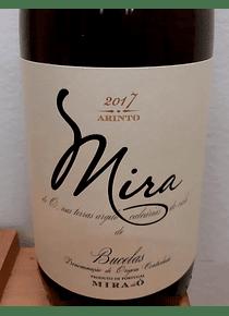 Mira Arinto 2017 (Bucelas)