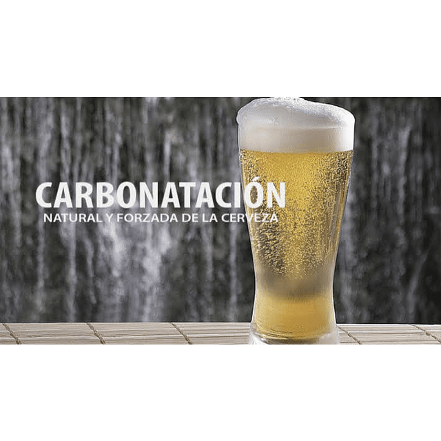 Curso Carbonatación - Salón Curacaví