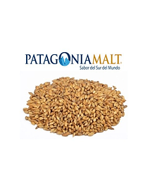 Malta Caramelo - CHILE 120 EBC