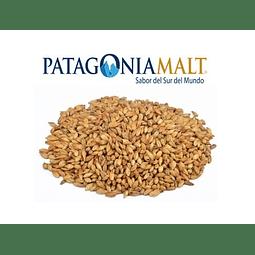 Malta Caramelo [120] EBC