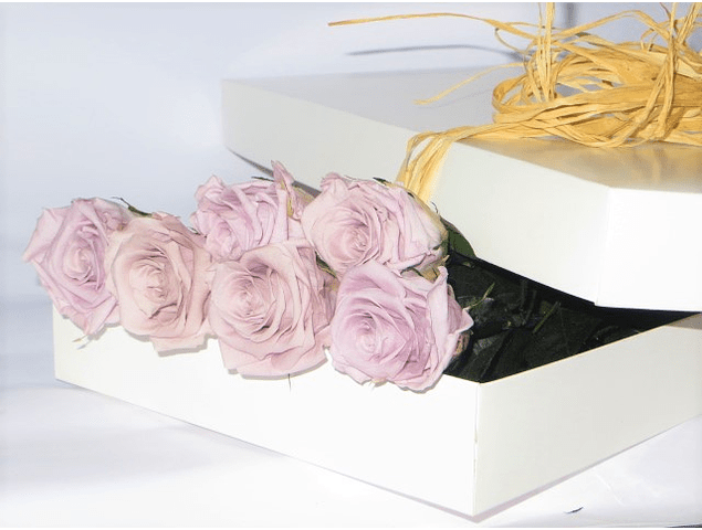 Caja 6 Rosas Preservadas