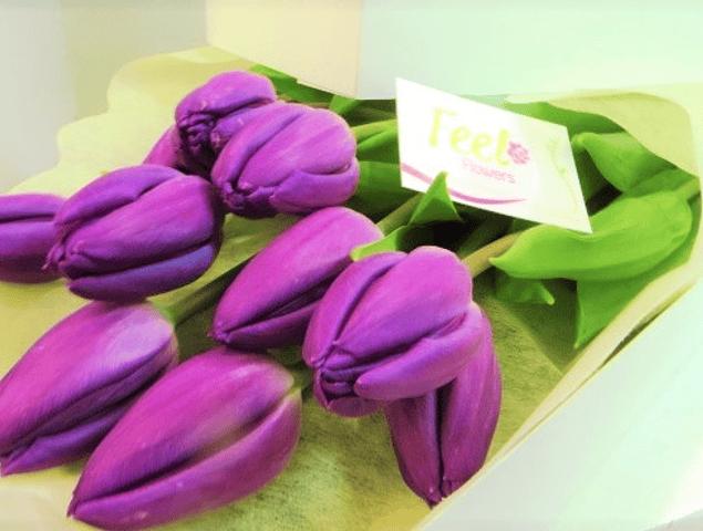 Caja de 10 Tulipanes