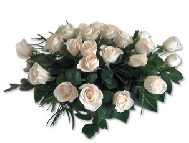 Cojín Ovalado 18 Rosas