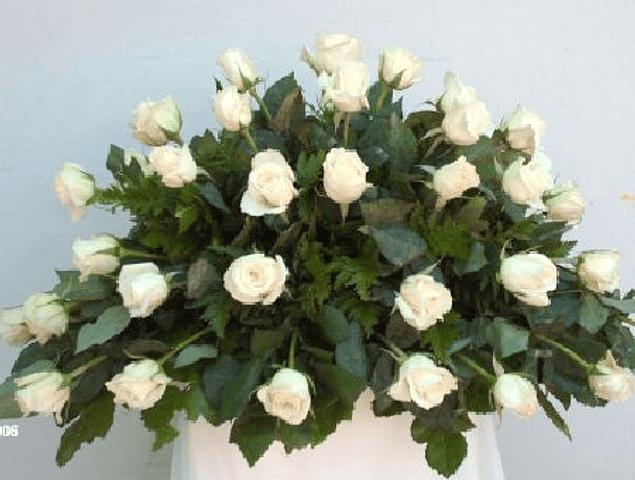Cubre Urna de 25 Rosas