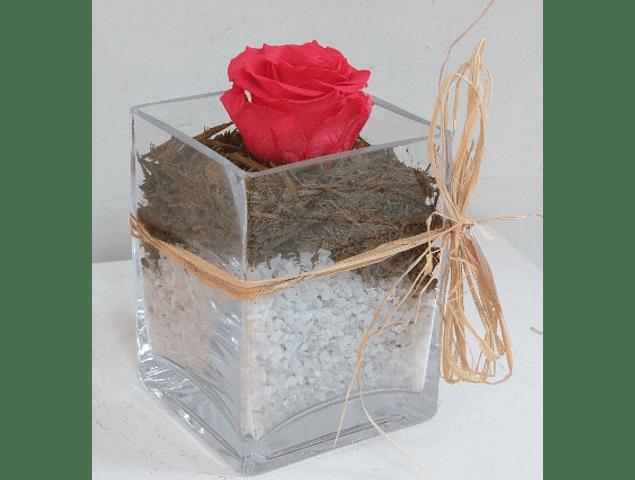 Rosa Preservada Individual