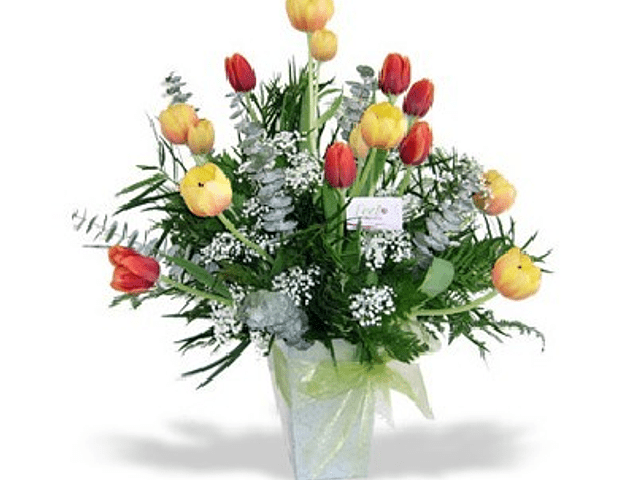 15 Tulipanes en Arreglo Floral