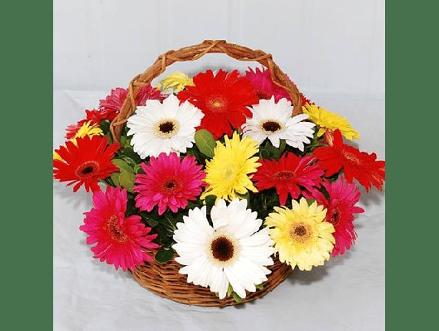 Canastillo de Gerberas Multicolor