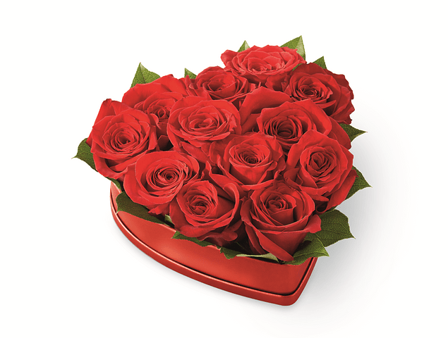 Corazón 12 rosas
