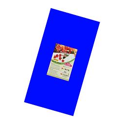 Tabla Plastica Azul 70CM x 35CM
