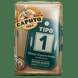 HARINA FUERZA TIPO UNO 1KG x 10