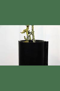 Nature - Vaso em Pele e Vidro